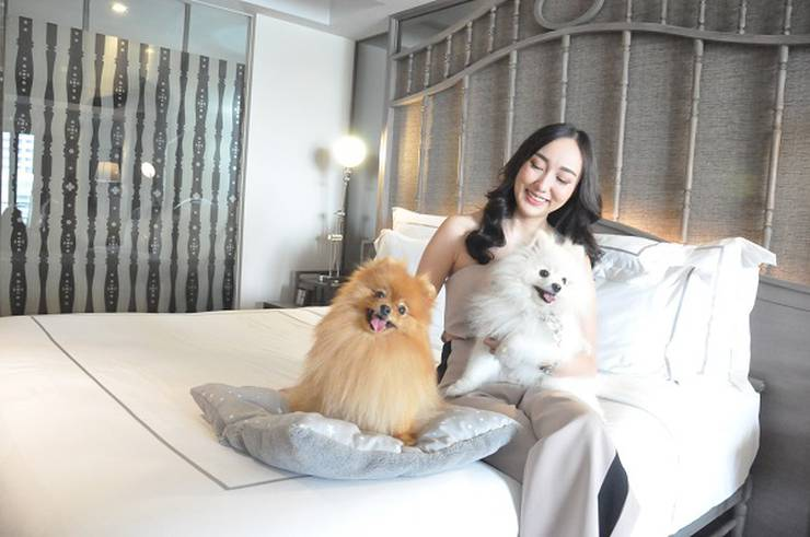 Pets on-the-go hotel riva surya bangkok